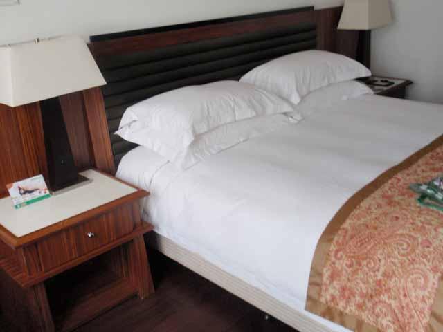 嘉福悦国際ホテル